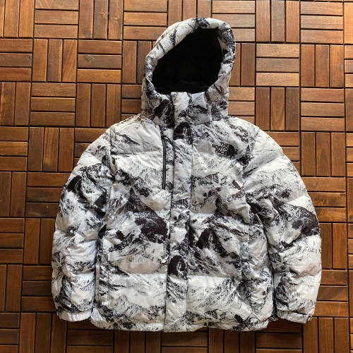 The North Face Mountain down jacket  北北雪山带帽羽绒服最